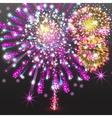Set Festive Firework Salute Burst on Transparent vector image vector image