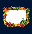 garden and tropic fruits harvest blank note vector image vector image