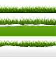 green grass and ripped paper white background set vector image vector image