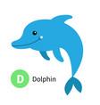 letter d dolphin zoo animal alphabet english abc