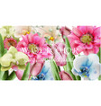 spring flowers background watercolor vector image vector image