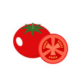 tomato on a white background vector image