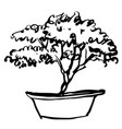 tree in pot doodle vector image vector image