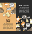 world of cute cats vertical promotional posters vector image vector image
