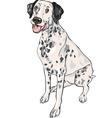 Dalmatian vector image vector image