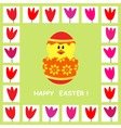 easter card 4 vector image