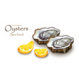 oysters and lemon realistic detailed 3d vector image vector image
