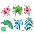 tropical Flowers and Palm vector image vector image