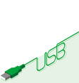 usb cable and plug with Inscription vector image