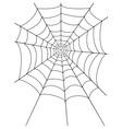 spidr web 01 vector image