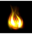 Best realistic fire flame vector image vector image
