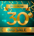 gold big sale thirty percent for discount vector image vector image