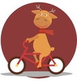 Greeting card with deer in a scarf on bycicle vector image vector image