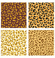 seamless leopard pattern set design animal print vector image vector image