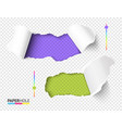 set bright green and violet hole in torn vector image