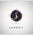simple elegance initial letter s gold logo type vector image