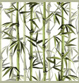 bamboo seamless vertical border on white vector image vector image