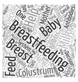 Should I Breastfeed or use Formula text background vector image vector image