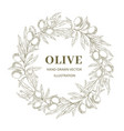 wreath with olive branches vector image