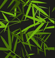 bamboo leaf pattern vector image vector image