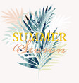 beautiful tropical poster with palm leaves vector image