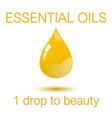 essential oils - one droop to beauty square vector image