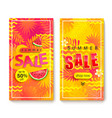 set vertical summer sale banners vector image
