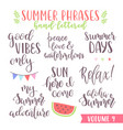 hand written summer lettering phrases vector image