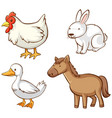 isolated picture farm animals vector image