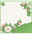 origami school vector image vector image