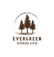 rustic retro vintage woodland evergreen pines vector image vector image