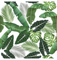 seamless pattern with tropical leaves alocasia vector image vector image