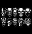 Set of different skulls
