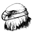 black and white eagle with mask hand drawn vector image