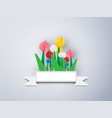 colorful tulip paper on a gray background vector image