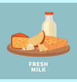 fresh milk and tasty cheese on wooden tray vector image vector image