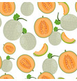 melon whole and half seamless pattern on white vector image vector image