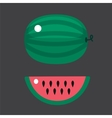 Ripe striped watermelon isolated on white vector image vector image