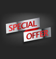 special offer advertising banner metal shining vector image