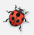 sticker ladybug top view with contour vector image