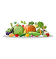 big vegetable isolated icon set vector image