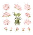 Design elements for floral bouquet vector image vector image