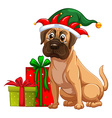 Dog and christmas presents vector image vector image