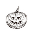 halloween pumpkin hand drawing vector image vector image