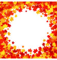 maple leaves round frame on white background vector image