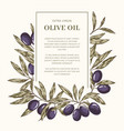 olive oil label template vector image vector image