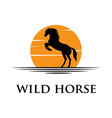 black horse silhouette logo with sunset background vector image