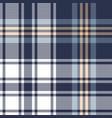 blue plaid pattern graphic vector image vector image