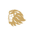 gold angry lion head logo sign design vector image vector image