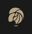 Leo Horoscope Icon vector image